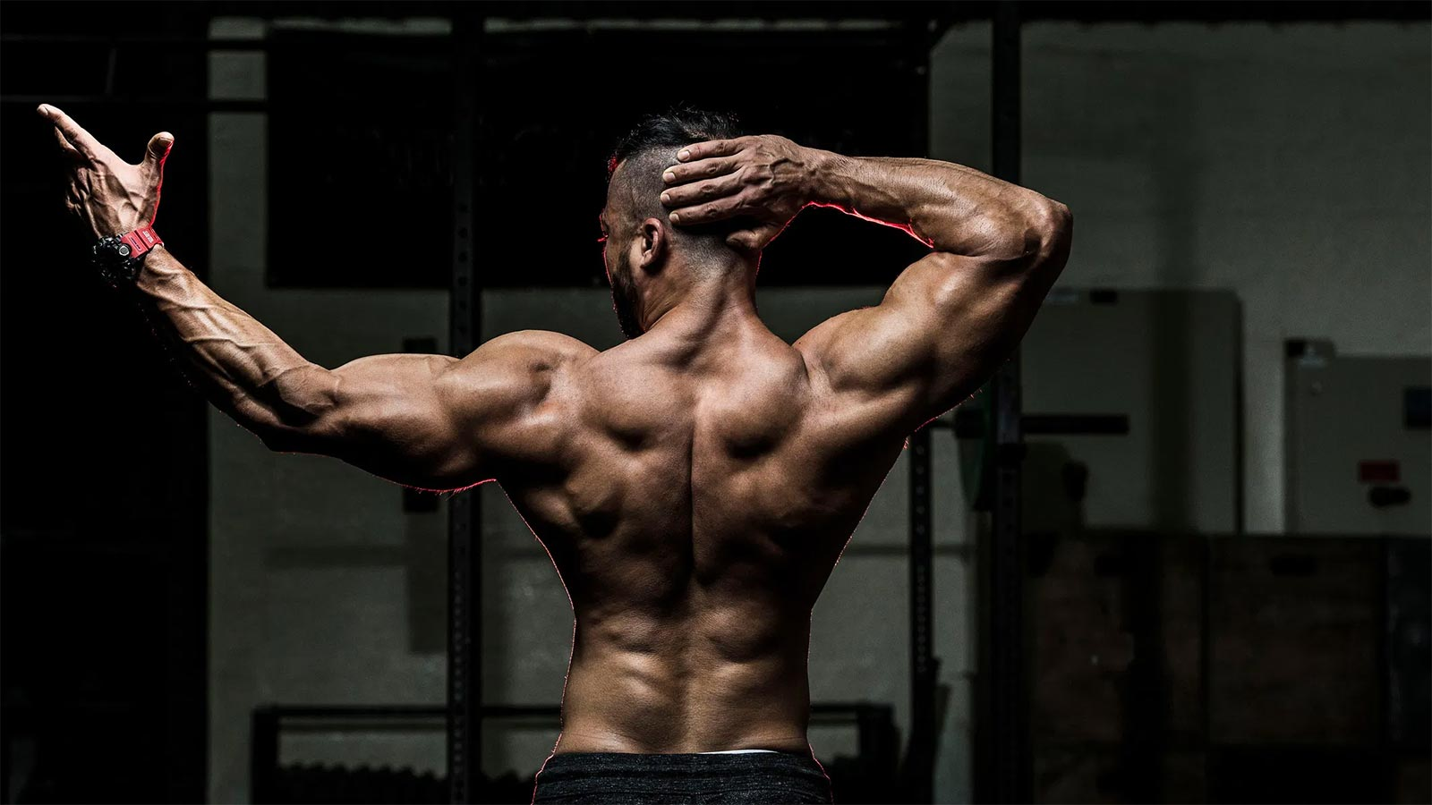 Top 5 back exercises for an amazing back workout